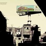 الوظيفة الاجتماعية للمدينة وللملكية العمرانية في الدستور المصري