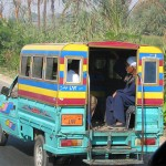 The Right to Public Transportation and Urban Mobility in the Egyptian Constitution
