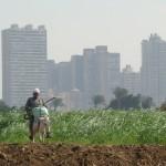 رؤية التنمية الاستراتيجية للقاهرة: ماذا عن التخطيط التشاركي؟