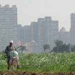 Cairo 2050 Revisited: What about Participatory Planning?