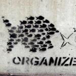 ائتلافات المجتمع المدني في مصر