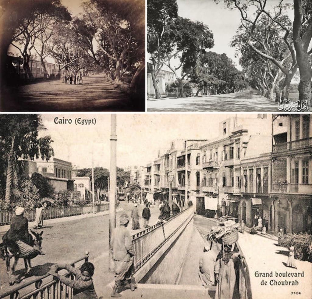 شارع شبرا في مراحل تاريخية مختلفة، حيث تظهر صفوف الشجر على جانبيه والتي كانت تعطيه مظهراً حضرياً مميزاً في بدايته، كما تظهر بعض القصور ذات الحدائق التي كانت في وقت من الأوقات منتشرة بطول الشارع