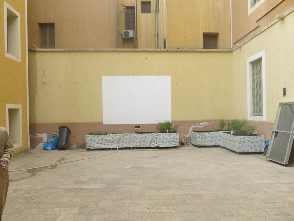 The wall in the backyard on which films were once projected for the children is now splattered with paint Source: TADAMUN