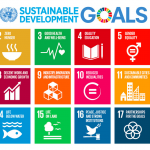 A User's Guide to the Sustainable Development Goals