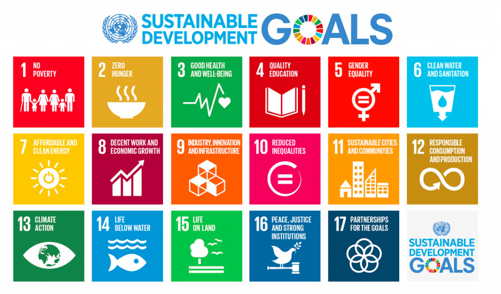 The Sustainable Development Goals. (Source: United Nations, 2015).